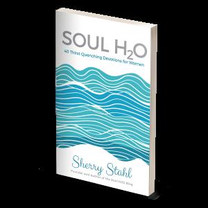 Soul H2O book