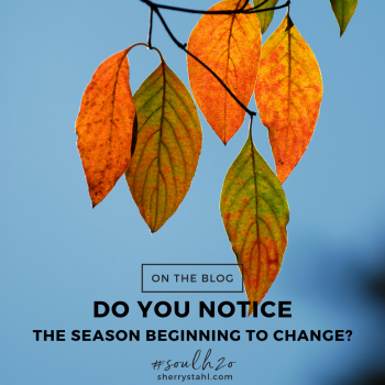 seasons changing
