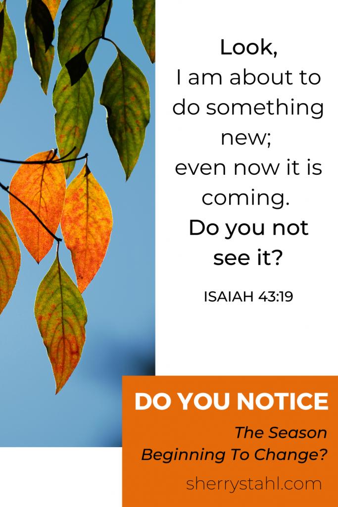 Isaiah 43:19 season change